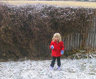 Snowy zoe